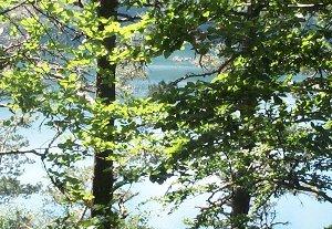 Reconversion écologique et sociale