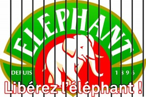 liberez-elephant