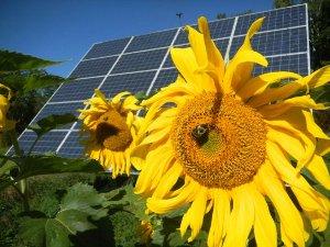 Des fournisseurs d'énergie publics, locaux, écolos et rentables… Mais interdits en France !