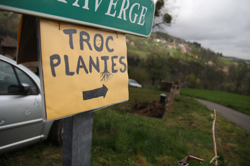 troc_plantes_4