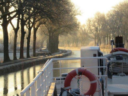 Du vin bio au fil de l'eau : une coopérative tente de relancer le transport fluvial, bien moins polluant