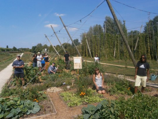 Agriculture urbaine : comment les jardins étudiants fleurissent aux abords des résidences universitaires