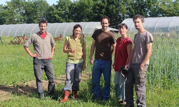 L'une des premières fermes françaises en coopérative : de jeunes paysans explorent une alternative prometteuse